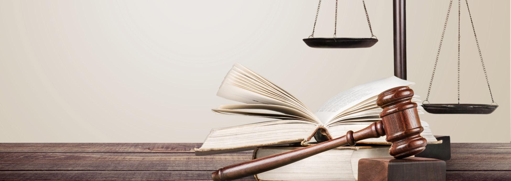 Allgemeine Geschäftsbedingungen, Einkaufsbedingungen und Datenschutz